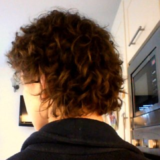 back of my hair after first BS/ACV rinse, so the beginning of my journey today :).