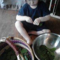 Little plant helper
