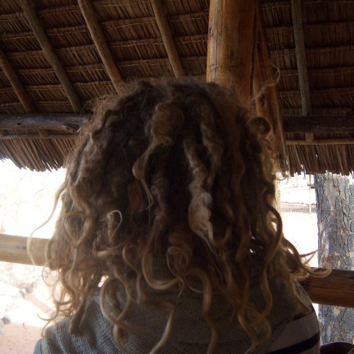 Dreads in africa about 2 Wks before I combed out