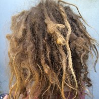 Willow's Wild Dreads