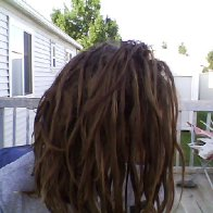 natty dread natty dread