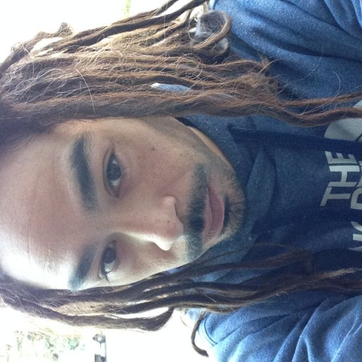 All natural dreadlocks, about a year