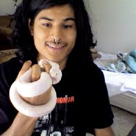 my albino california kingsnake. her name is Azele (:
