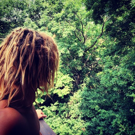 Woke up in the trees.