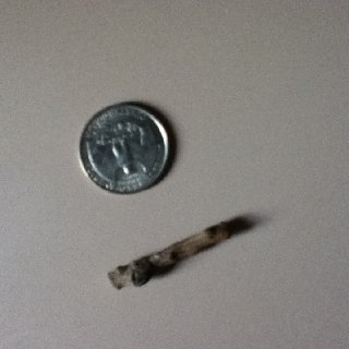 I found this stick in a bag of pistachios... Does this mean I win?!?!