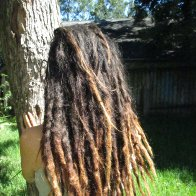 Dreads Are 2 Years Old
