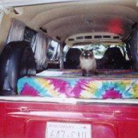 Herbie and Stealie