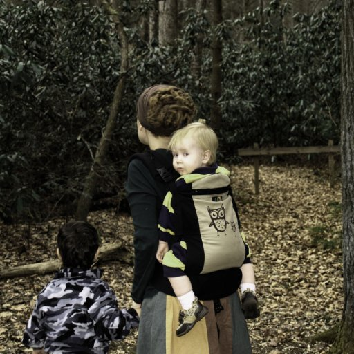 in the woods 11/2009