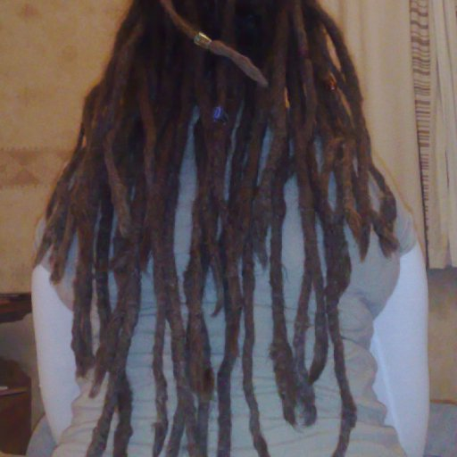 Dreads January 2010
