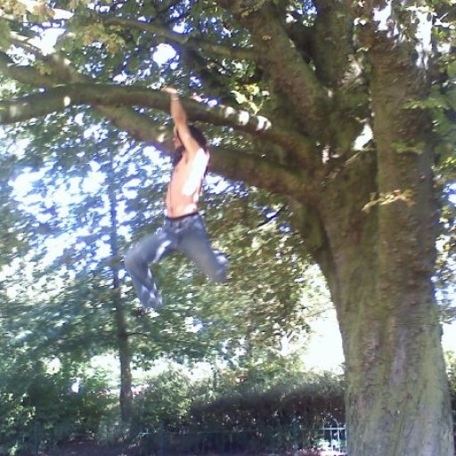 Climbing a Tree at Queens Park