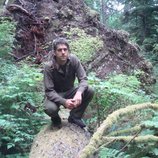 Tate in rainforest