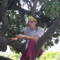 Chillin' in a tree