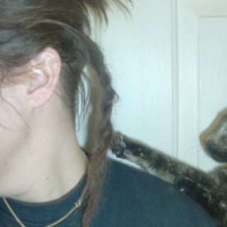 oreo likes dreads