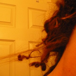 my frizz that is at the base of my head is starting to dread into super baby dreads! I have two of them, they are so cute