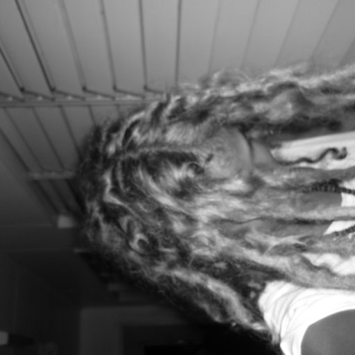 b&w dread 3 weeks