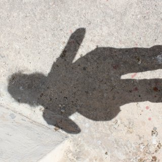 my shadow not yet in dreads
