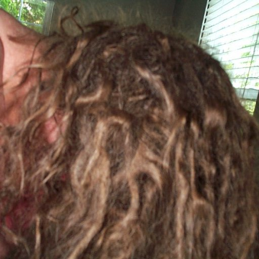 4-month old dreads with lots of zigzags and loops 005