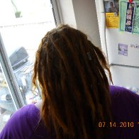My back dreadies.... they are about 6 weeks old