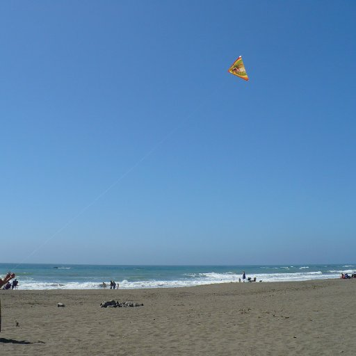 cobra kite on the beach