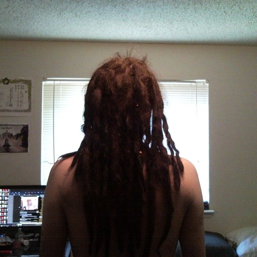 dreads back 2.5 months ish
