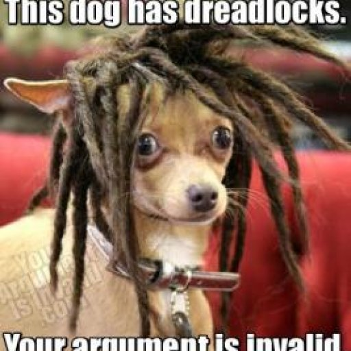 this_dog_has_dreadlocks.thumbnail