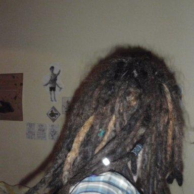 back - 16 months