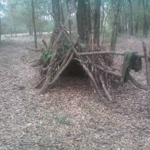 This is a shelter I build in Ocala, FL