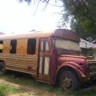 bus paint