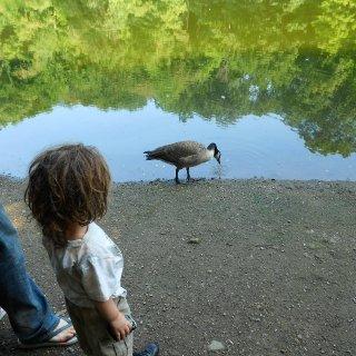 mill creek park
