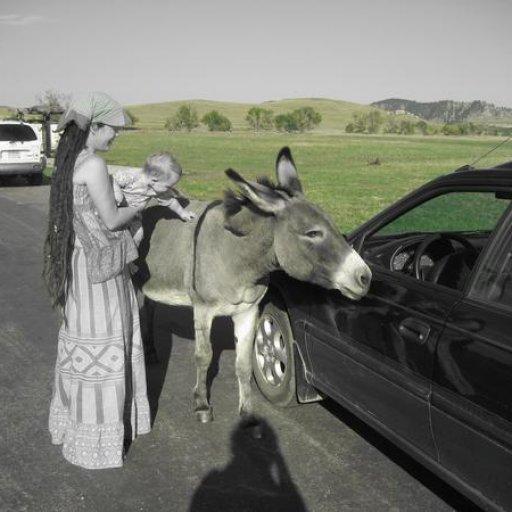 Custerpark2007