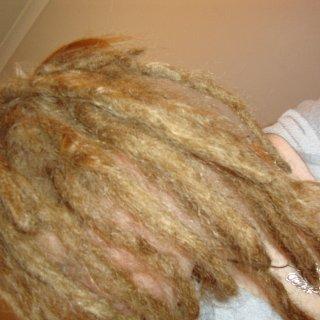 dreads 2 weeks