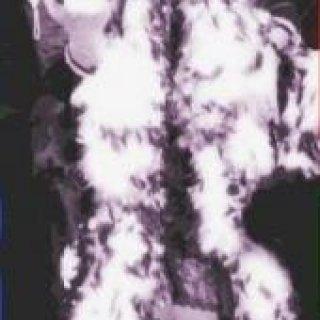 King of da Funk..(Parliments/Funkedelics)