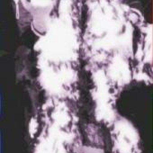 m_9c129750a845484ba258bd2d42f86911 Queen of Funk