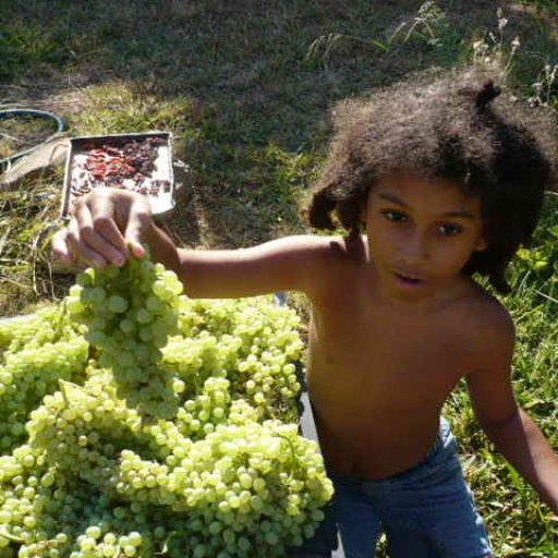 My son with the huge grape harvest