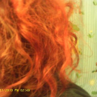 lotsa frizzies but can see dreads definately forming!
