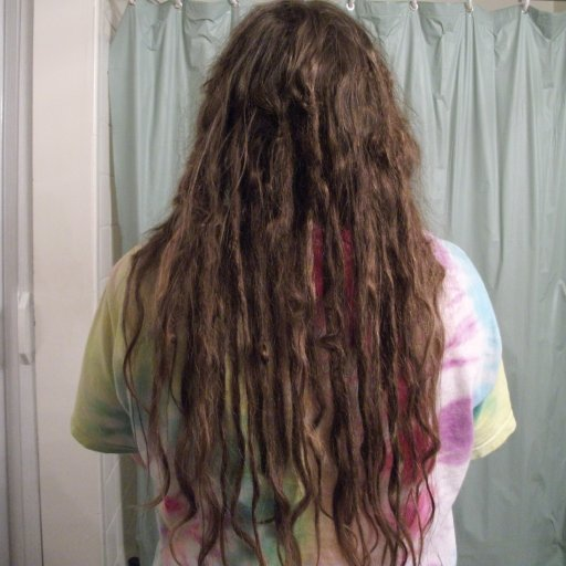 Dreadlocks at 11 weeks back view