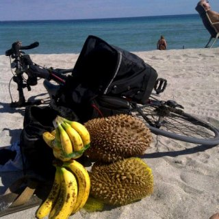 durian on the beach
