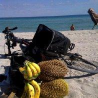 Durian on the Beach!