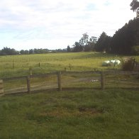 Ma front yard in ma Hometown