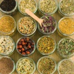 health and alternative medicines