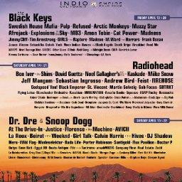Coachella Dreadies