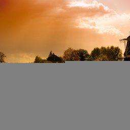Dutch Dreadies