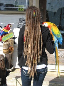 Natural Dreads!