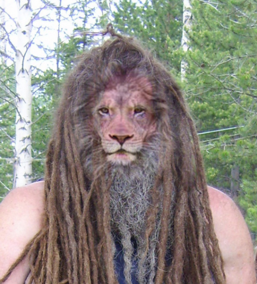 Whitney Anique Haisma